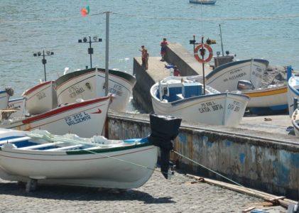 Governo dos Açores já pagou mais de 730 mil euros a duas centenas de armadores