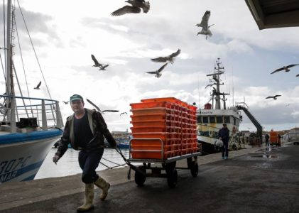 Coronavírus: Pescadores à beira de um ataque de nervos