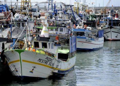 Ministro insatisfeito com resultados do Conselho Europeu das Pescas