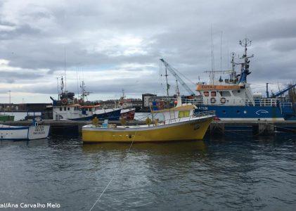 """Sindicato admite estar em """"situação difícil"""" para defender pescadores"""