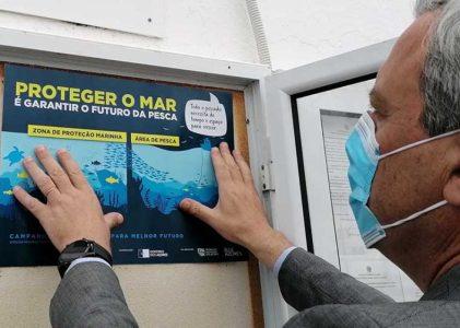 Governo dos Açores vai apoiar abate de redes de emalhar