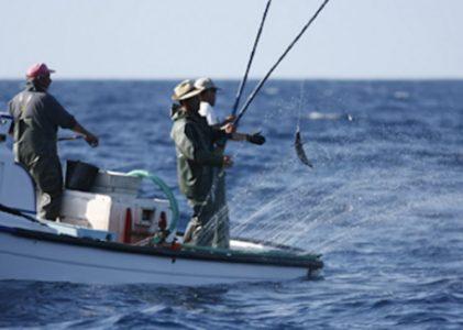 """Projeto """"PESCAz – Pescarias Sustentáveis nos Açores"""" foi apresentado na Horta"""
