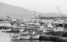 Pescadores insatisfeitos com fecho de capturas pedem compensações